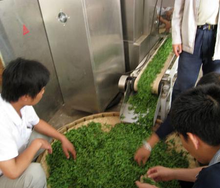 滚筒式茶叶杀青干燥机